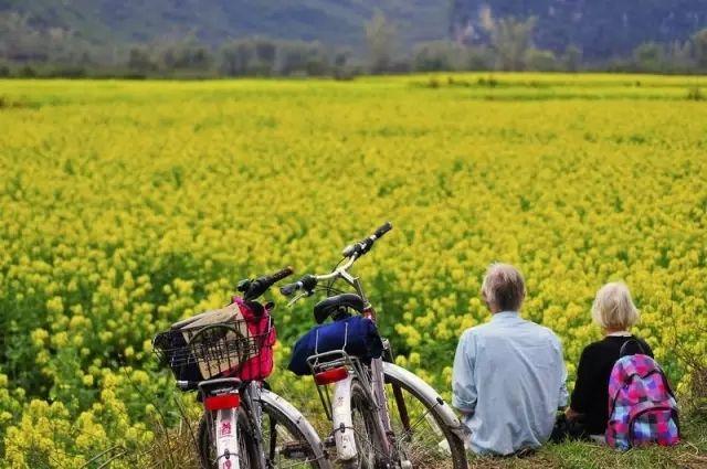 """旅游进入""""村时代"""" 或将迎来新一轮投资热潮"""