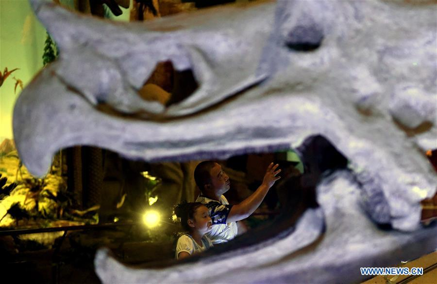 People visit the Xixia Dinosaur Relics Park in Danshui Town of Xixia County, central China's Henan Province, Aug. 22, 2017. China is slated to become world's largest theme park market by 2020, when the number of tourists is expected to exceed 230 million, according to a fresh report by U.S. engineering firm AECOM. The number of tourists to Chinese theme parks have seen an average annual growth of 13 percent in the past decade, and reached 190 million in 2017. The number is expected to keep the double digit growth in the following years, according to the report. The report attributes the rapid growth to Chinese consumers' rising income that sparks greater demands on leisure activities, as well as more convenient public transportation systems. (Xinhua/Li Jia'nan)<br/>