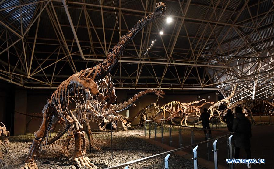 Tourists view dinosaur fossils at the World Dinosaur Valley in Lufeng County, southwest China's Yunnan Province, Dec. 23, 2017. The Lufeng World Dinosaur Valley, a dinosaur theme park, exhibited over 100 fossils of a variety of dinosaurs. China is slated to become world's largest theme park market by 2020, when the number of tourists is expected to exceed 230 million, according to a fresh report by U.S. engineering firm AECOM. The number of tourists to Chinese theme parks have seen an average annual growth of 13 percent in the past decade, and reached 190 million in 2017. The number is expected to keep the double digit growth in the following years, according to the report. The report attributes the rapid growth to Chinese consumers' rising income that sparks greater demands on leisure activities, as well as more convenient public transportation systems. (Xinhua/Lin Yiguang)<br/>