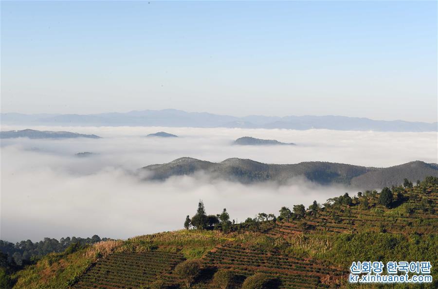 윈난 란창: 운무 자욱한 산골 풍경<br/>