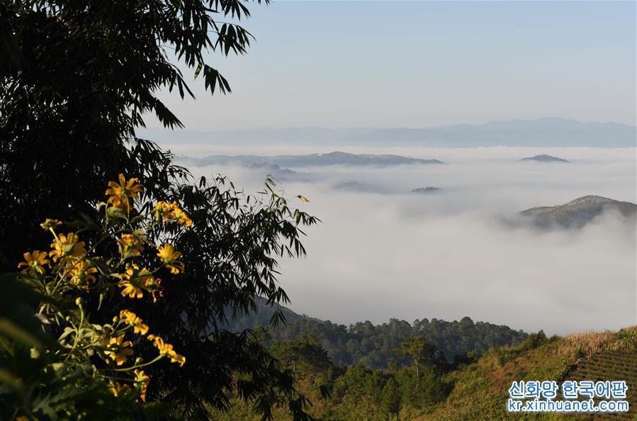 윈난 란창: 운무 자욱한 산골 풍경