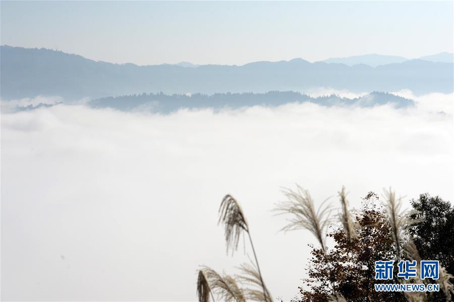 <br/>   11月29日,贵州省黔东南苗族侗族自治州从江县境内出现迷人的云海景观。<br/>