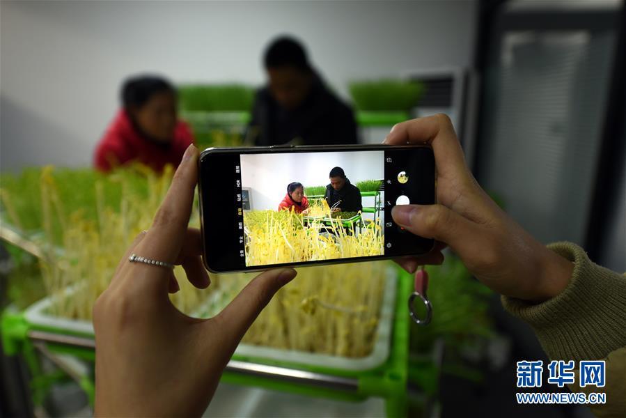 <br/>  今年30岁的胡天池是山东省临沂市郯城县红花镇一名大学生毕业。<br/>