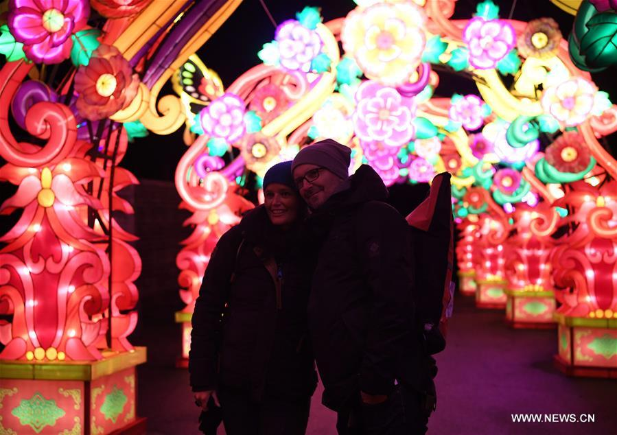 People visit China Light Festival at Cologne Zoo in Cologne, Germany, on Jan. 3, 2019. The festival is held here presenting more than 50 lights from Dec. 8, 2018 to Jan. 20, 2019. (Xinhua/Lu Yang)<br/>