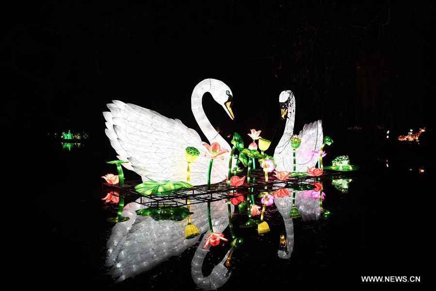 Illuminated swans are seen during China Light Festival at Cologne Zoo in Cologne, Germany, on Jan. 3, 2019. The festival is held here presenting more than 50 lights from Dec. 8, 2018 to Jan. 20, 2019. (Xinhua/Lu Yang)<br/>