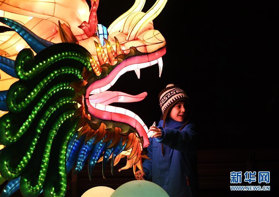 1月3日,在德国科隆,一名儿童在中国彩灯节上参观。新年伊始,正在科隆动物园举办的科隆第二届中国彩灯节吸引人们前来参观。本届彩灯节于2018年12月8日开幕,将持续至2019年1月20日,展出各类彩灯50余组。<br/>