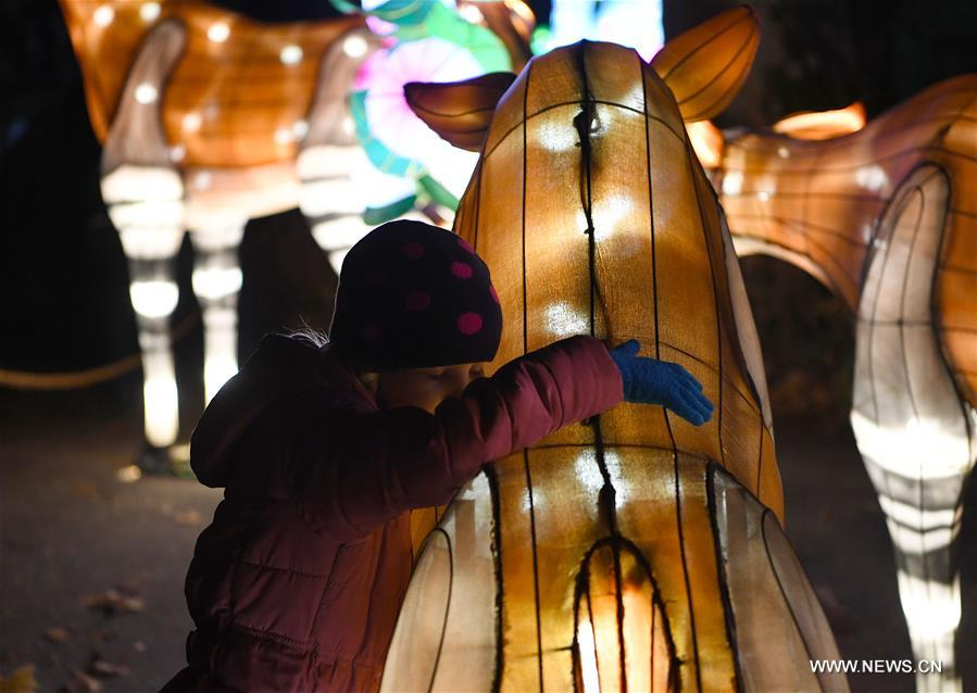 A child visits China Light Festival at Cologne Zoo in Cologne, Germany, on Jan. 3, 2019. The festival is held here presenting more than 50 lights from Dec. 8, 2018 to Jan. 20, 2019. (Xinhua/Lu Yang)<br/>