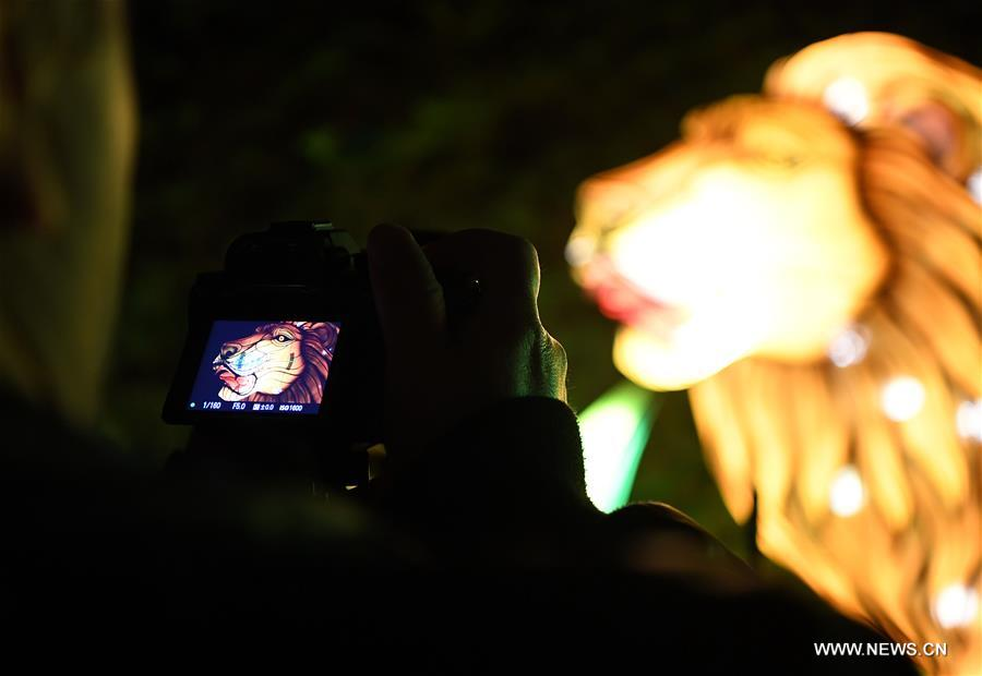 A visitor takes photos during China Light Festival at Cologne Zoo in Cologne, Germany, on Jan. 3, 2019. The festival is held here presenting more than 50 lights from Dec. 8, 2018 to Jan. 20, 2019. (Xinhua/Lu Yang)<br/>