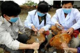国家中医药管理局采取措施防控流感