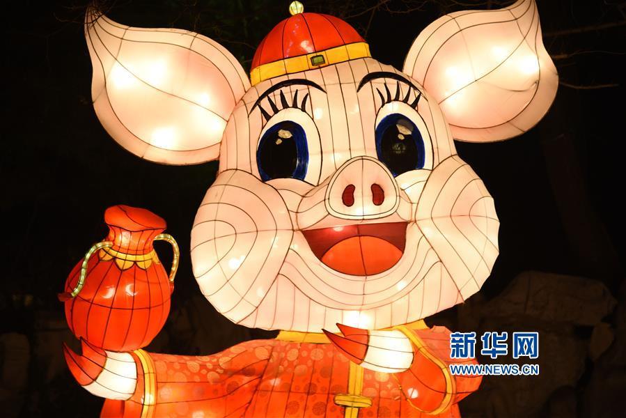 这是永利国际投注平台市第40届趵突泉迎春花灯会开灯仪式上的花灯(1月27日摄)。<br/>