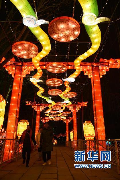 1月27日,部分受邀市民代表在开灯仪式上欣赏花灯。