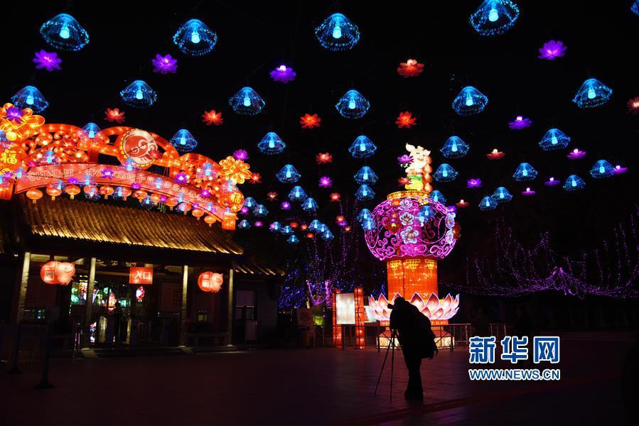 1月27日,市民在永利国际投注平台市趵突泉公园门外拍摄花灯。<br/>