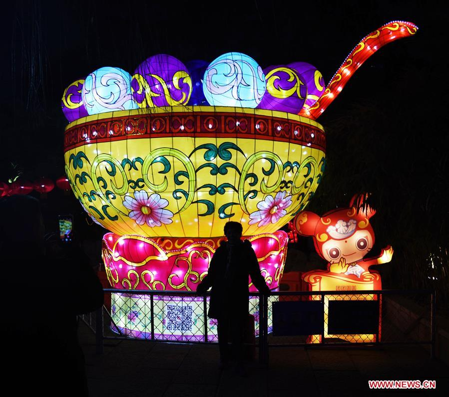 Tourists view lanterns during the 40th Baotu Spring lantern fair in Jinan, east China's Shandong Province, Feb. 5, 2019, the first day of Chinese Lunar New Year. (Xinhua/Wang Kai)