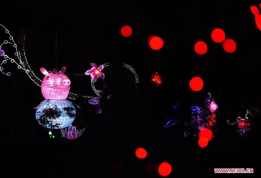 Fancy lanterns are displayed during the 40th Baotu Spring lantern fair in Jinan, east China's Shandong Province, Feb. 5, 2019, the first day of Chinese Lunar New Year. (Xinhua/Wang Kai)<br/>