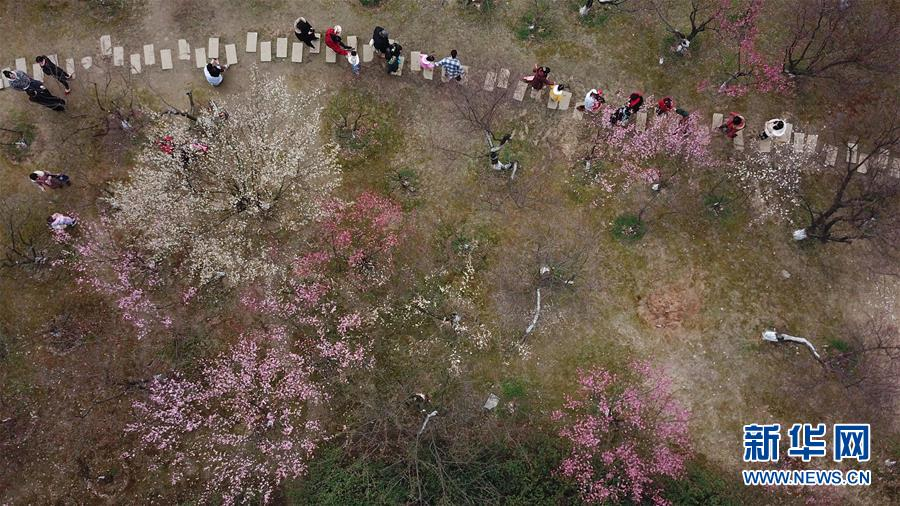 <br/>   2月25日,游人在合肥市匡河岸边赏梅(无人机拍摄)。<br/>