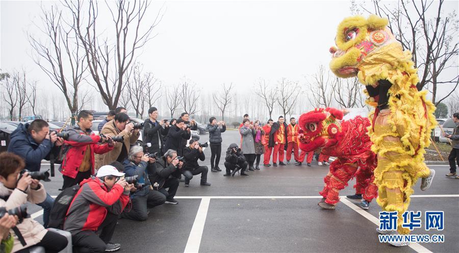 <br/>   3月3日,摄影爱好者在菰城村拍摄舞狮表演。<br/>