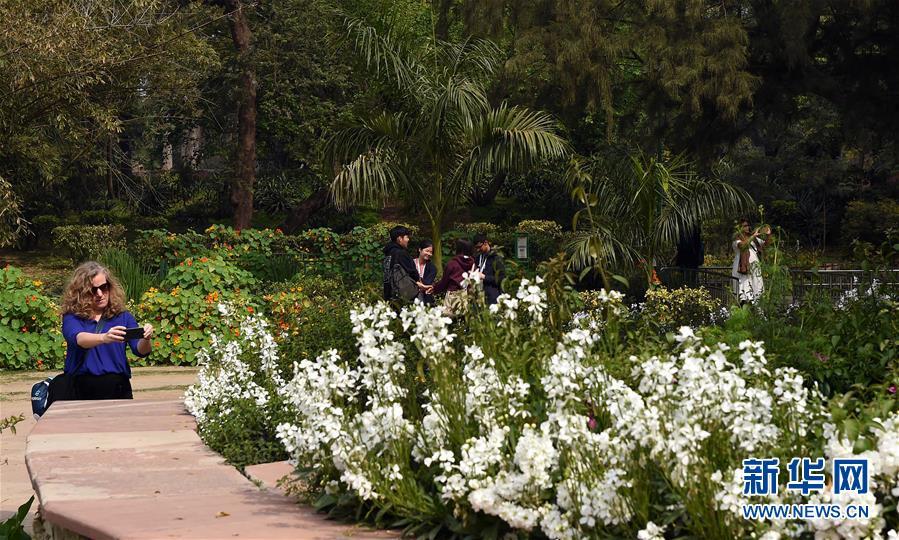 <br/>   3月14日,在印度首都新德里的罗迪公园,一名女子在鲜花前拍照。