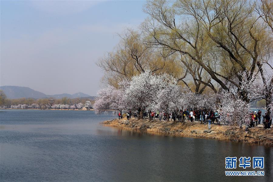 <br/>   3月17日,游客在北京颐和园游览。 春日里的颐和园风光旖旎,游人如织。