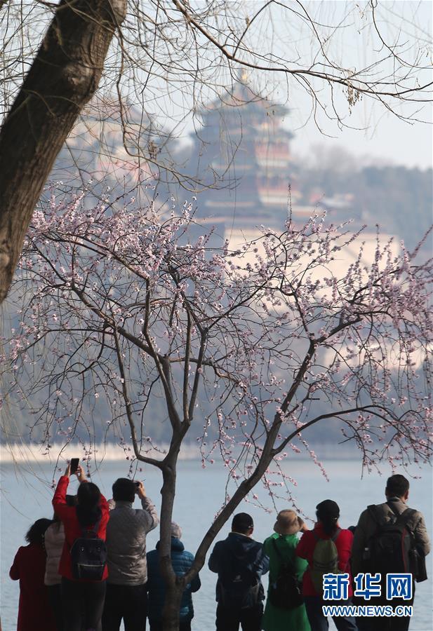 3月17日,游客在北京颐和园拍照。 春日里的颐和园风光旖旎,游人如织。<br/>