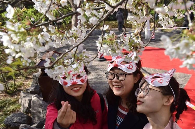 2019济南市第十八届五龙潭樱花节开幕!