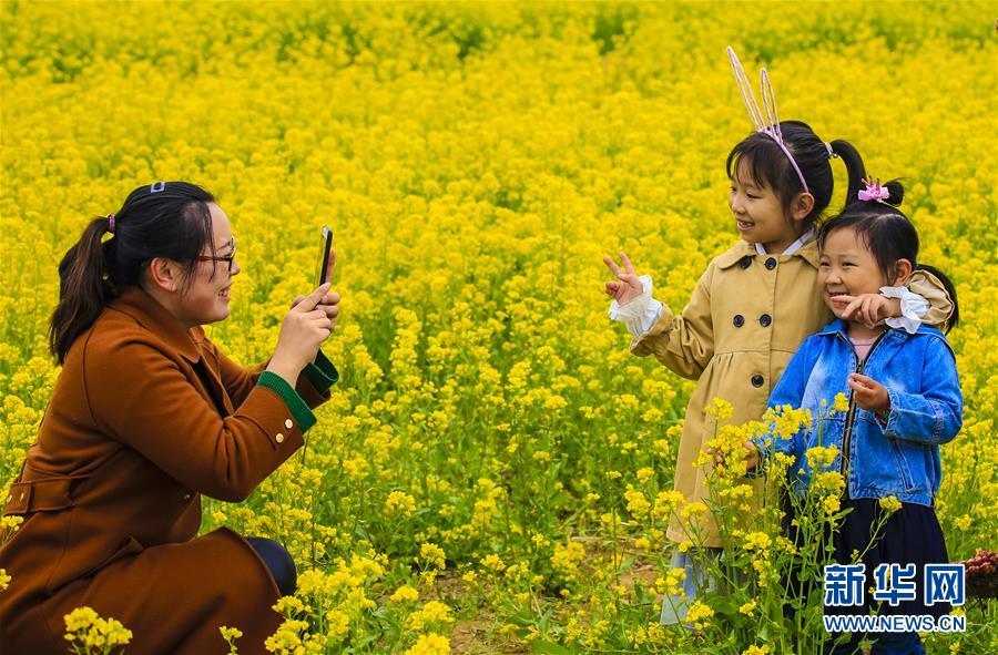 4月13日,一名游客在油菜花海里为孩子拍照。近日,河北省安平县3万亩油菜花竞相绽放,美不胜收,吸引众多游客前来参观游玩。<br/>