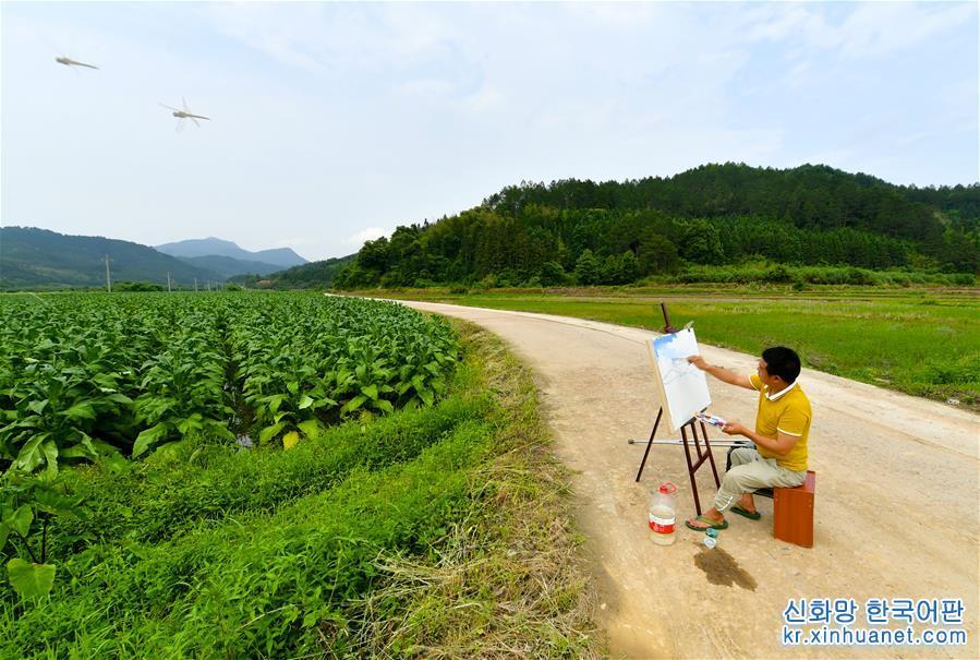 5월16일, 린푸성(林福生)이 화산(華山)진 화롄(華聯)촌 마을 입구에서 그림을 그리고 있다. 장시성 리촨(黎川)현 화산진 화롄촌 주민 린푸성은 세 살 때 소아마비를 앓았다. 가정 형편이 여의치 못한데다 현지 의료여건이 열악해 제대로 된 치료를 받지 못한 바람에 그는 오른쪽 다리 근육이 위축되어 평생 불구자가 되었다. 다리가 불편한 관계로 출입을 하기 어려웠던 그는 어린 시절 유일한 취미가 그림 그리는 것이었다. 그는 &ldquo;붓을 잡기만 하면 온 힘을 다해 그림을 그렸다. 그림을 그리면 마음의 평화를 찾을 수 있었다&rdquo;고 술회했다. 그는 화가가 되겠다는 꿈을 포기하지 않고 언젠가 붓으로 자신의 가치를 실현하게 되길 바랬다. 2013년 리촨현 유화창의산업단지가 생기면서 그는 집으로 돌아갈 생각을 하게 됐다. 현지 정부의 도움과 소개로 린푸성은 전문 화가로 성장했다. 현재 그는 단지에 자신의 유화 작업실을 가지고 있다. 매년 수입은 3-4만 위안에 달한다. &ldquo;딸이 건강하게 자라는 것을 보면서 기쁨을 느끼고 위안을 삼는다. 지금 빈곤에서 벗어나기는 했지만 아직 부유해지진 않았다. 딸이 행복하게 살도록 하는 것이 가장 큰 희망&rdquo;이라고 그는 말했다. [촬영/신화사 기자 후천환(胡晨歡)]<br/>