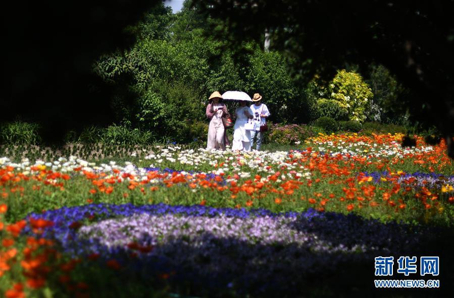 <br/>   5月23日,市民在泰达园林植物资源库百花园内游玩。 位于天津经济技术开发区的泰达园林植物资源库曾是一片盐碱滩,被称为&ldquo;绿色植物的禁区&rdquo;。经过近10年绿化建设,已经建成10多个植物专类园,拥有植物6000余种,成为集科研、科普、示范和观赏功能为一体的植物资源库。 新华社记者岳月伟摄