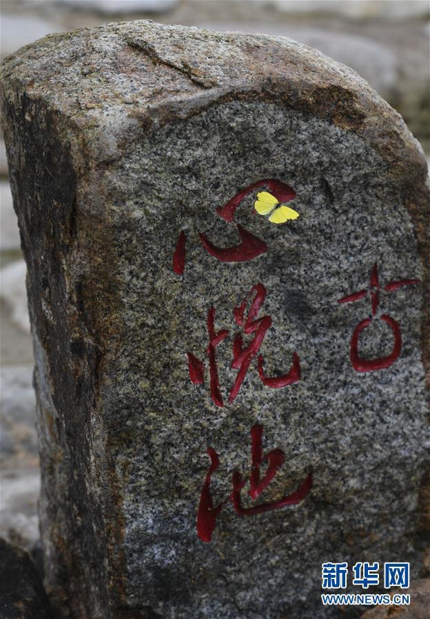 나비 한 마리가 샹산(香山)산 고역도(古驛道&bull;고대무역길) 비석 위에 내려앉았다. [사진 출처=신화망]<br/>