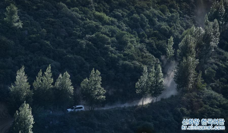 황토 고원 위에 위치한 산시성 옌안시 우치현은 과거 중앙 홍군 장정의 임시 거처였던 곳이자 전국 최초로 경작을 중지하고 산림을 복원한 현이다. 1998년부터 우치현은 산을 봉쇄하고 경지를 조성하고 나무와 풀을 심고 양을 길렀다. 1999년 우치현은 155.5만 묘에 이르는 경작지의 경작을 중지했다. 지난 20년간 우치현이 경작을 중지해 산림을 환원하고 황폐한 산에 숲을 조성한 면적이 245만 묘에 이르면서 현지 생태 환경에 질적인 전환이 나타나 척박하고 황량했던 황토 산비탈이 짚푸른 녹색옷으로 갈아입었다. 나무와 풀이 전체 면적에서 차지하는 비율이 1997년 19.2%에서 현재 72.9%로 상승했다. 연간 강우량은 1997년의 478.3mm에서 2017년 587.5mm로 증가했다. 현지민들은 식량 재배 위주와 넓은 땅에 곡식을 심어도 소출이 적던 전통적인 토지 경영 모델에 마침표를 찍고 주거와 생태 환경을 개선했다. 점차 발전하는 가정 임장(林場) 및 임지 자원과 삼림 생태환경에 기반한 삼림경제가 현지민들이 빈곤에서 벗어나 부자가 되는 새로운 &lsquo;출구&rsquo;로 자리잡으면서 농민들의 소득이 안정적으로 증가했다. 2018년 우치현 농민의 1인당 평균 가처분 소득은 1997년의 12배로 껑충 뛴 1만956위안에 달했다. [촬영/신화사 기자 타오밍(陶明)]<br/>