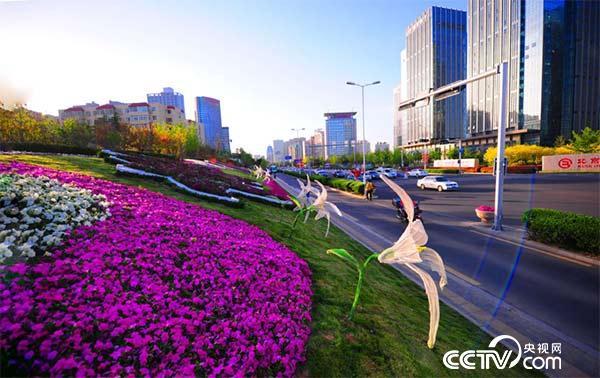 崂山城区摄影:闫培森