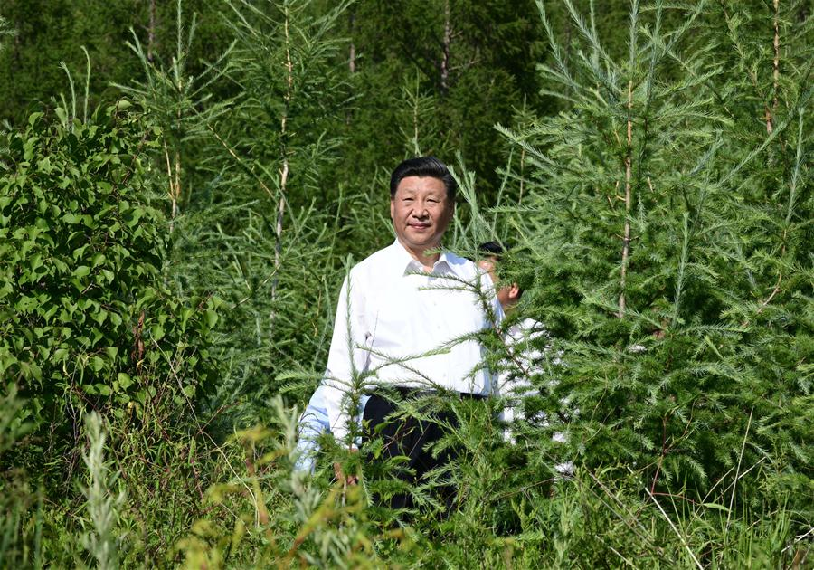 Chinese President Xi Jinping, also general secretary of the Communist Party of China (CPC) Central Committee and chairman of the Central Military Commission, visits Maanshan forest farm to learn about ecological civilization building in Harqin Qi of Chifeng City, China's Inner Mongolia Autonomous Region, July 15, 2019. Xi went on an inspection tour in Inner Mongolia Monday. (Xinhua/Xie Huanchi)<br/>