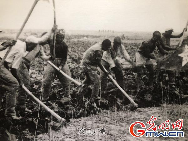【新时代·幸福美丽新边疆】新疆生产建设兵团:让忠诚的种子在这片土地上世代相传