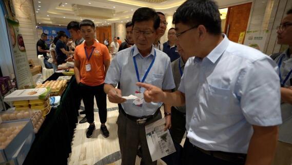 山东优质蛋品产销对接会在上海举行