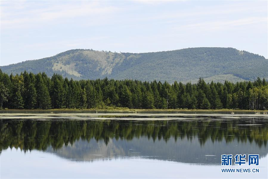 <br/>  这是阿尔山国家森林公园杜鹃湖景区(8月14日摄)。 八月中旬的阿尔山国家森林公园郁郁葱葱,水光山色,景色宜人。 新华社记者 刘磊 摄