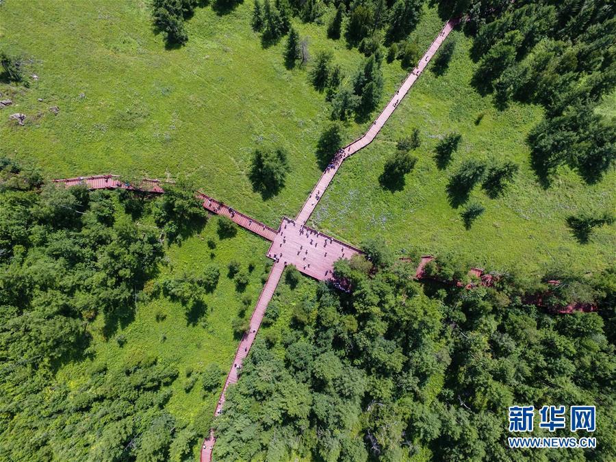 <br/>  这是阿尔山国家森林公园景区内的一处观景步道(8月14日无人机拍摄)。 八月中旬的阿尔山国家森林公园郁郁葱葱,水光山色,景色宜人。