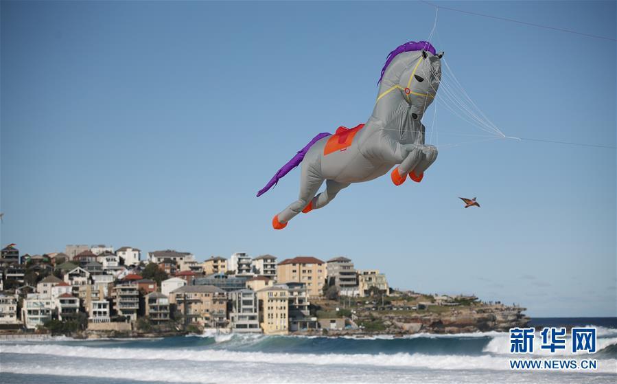 <br/>   这是9月8日在澳大利亚悉尼邦迪海滩拍摄的风筝节现场。 当日,一年一度的风筝节在澳大利亚悉尼的邦迪海滩举行,吸引大量市民前来观看。