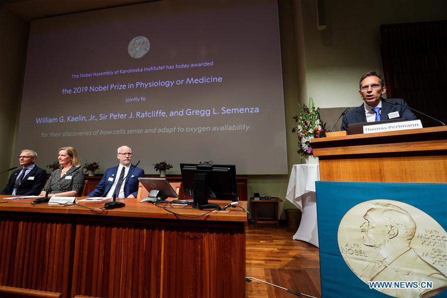 SWEDEN-STOCKHOLM-2019 NOBEL PRIZE ANNOUNCEMENT-PHYSIOLOGY OR MEDICINE