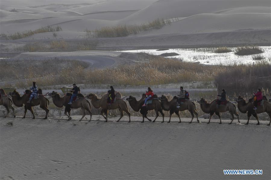 Tourists ride camels to enjoy the desert scenery at Lop Nur People Village in Yuli County, northwest China's Xinjiang Uygur Autonomous Region, Oct. 26, 2019. In the first three quarters of this year, Xinjiang received over 183.85 million tourists from home and abroad with a year-on-year increase of 40.9 percent, and saw a total tourism revenue of more than 304.6 billion yuan (about 43.1 billion U.S. dollars) with a year-on-year growth of 40.78 percent. (Xinhua/Zhao Ge)
