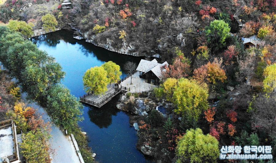 깊어가는 가을, 지난 난부산구는 붉은색, 노란색, 초록색 등 다양한 색채의 향연이 펼쳐져 한 폭의 아름다운 취안청(泉城)의 추색도를 그려놓았다. [촬영/신화사 기자 왕카이(王凱)]<br/>