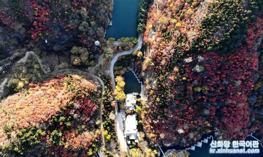 지난 난부산(南部山)구의 주루산(九如山)이 울긋불긋 고운 가을빛으로 물들었다. (11월 4일 드론 촬영)<br/>  깊어가는 가을, 지난 난부산구는 붉은색, 노란색, 초록색 등 다양한 색채의 향연이 펼쳐져 한 폭의 아름다운 취안청(泉城)의 추색도를 그려놓았다. [촬영/신화사 기자 왕카이(王凱)]<br/>