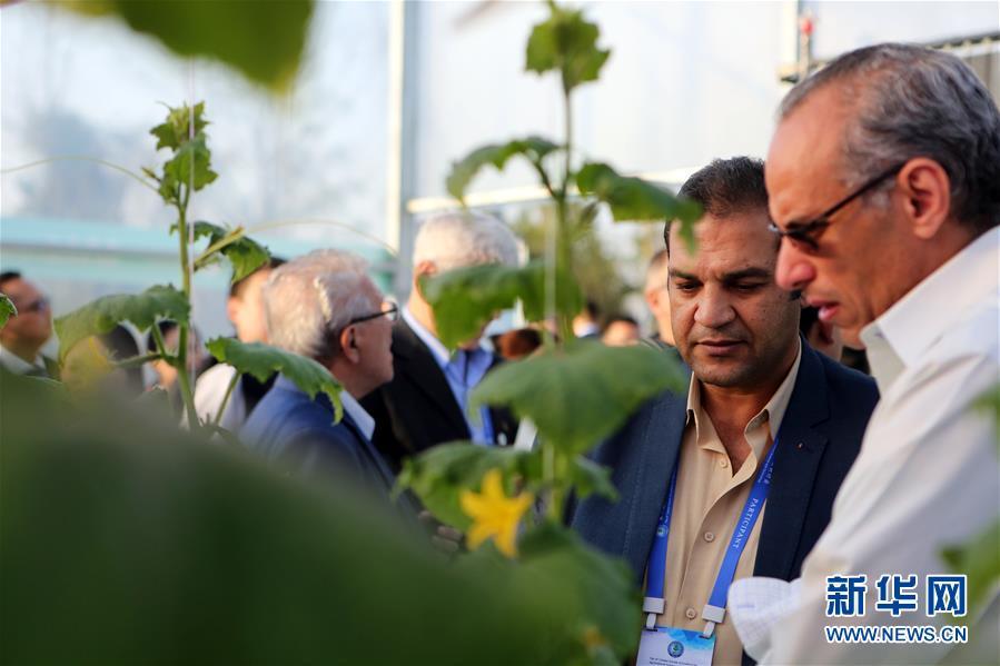 지난 14일 관람객이 '과일채소 공장' 전시구역을 참관하고 있다. [사진 출처: 신화망]