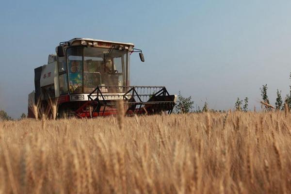 """保障粮食安全 10亿亩高标准农田重""""建""""也要重""""管"""""""