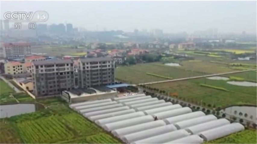 湖南衡阳县创新育秧方式为春耕生