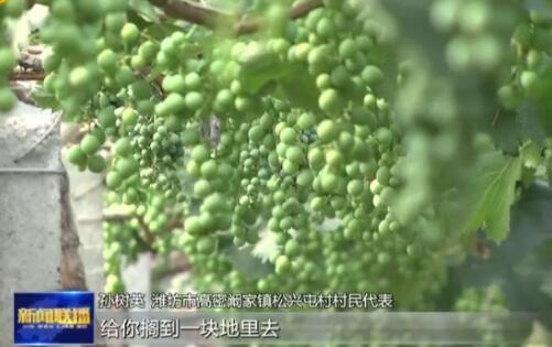 年人均纯收入4.5万元、村集体收入200多万元 从村民会议记录中探寻潍坊松兴屯的乡村振兴之路
