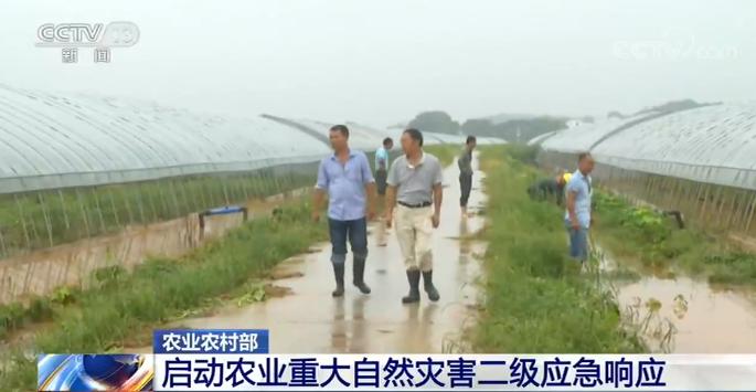 农业农村部:启动农业重大自然灾害二级应急响应