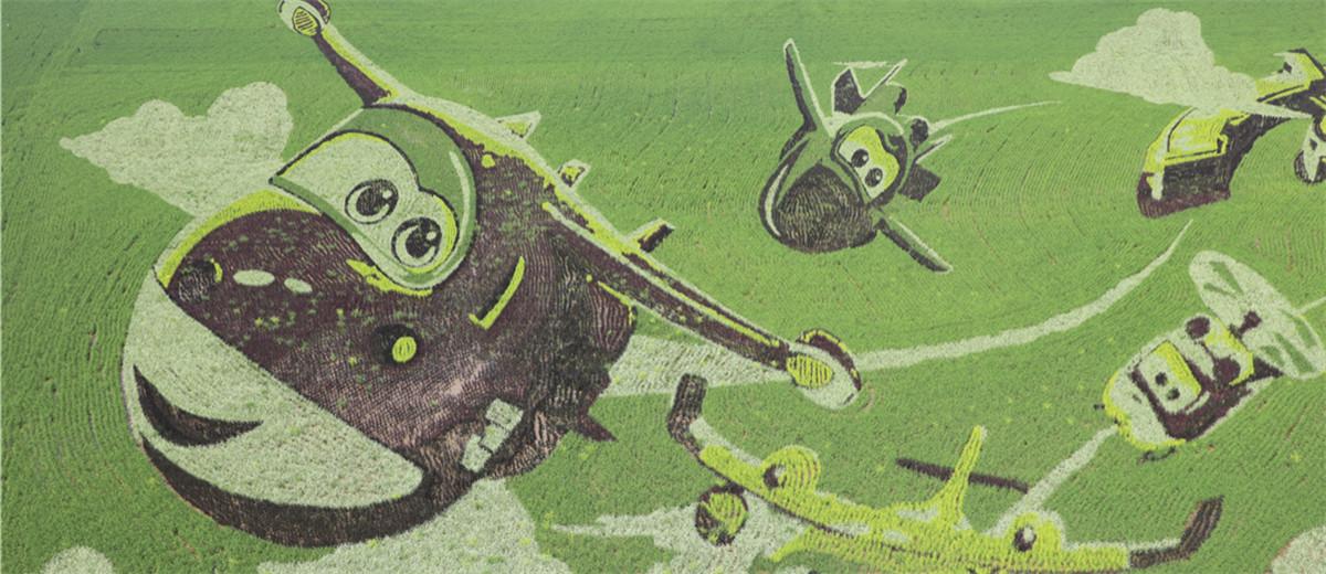 来了!6种水稻组成山东最大稻田画