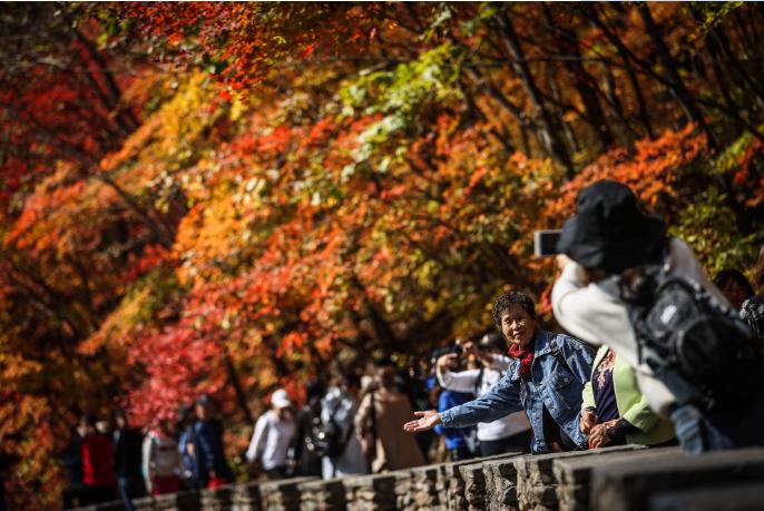 財經觀察 | 暢享抗疫成果 釋放復蘇信號——中國假日經濟熱潮令全球矚目