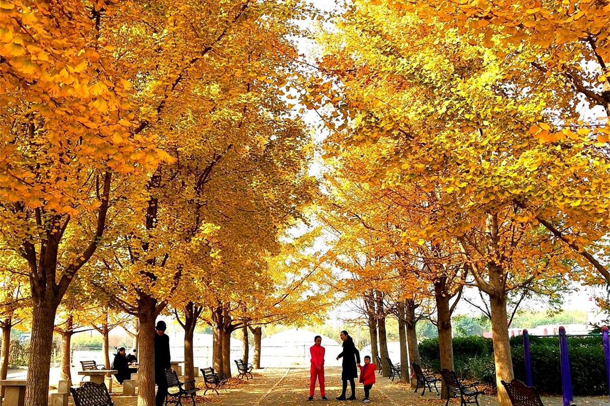 大数据读懂中国旅游新引力