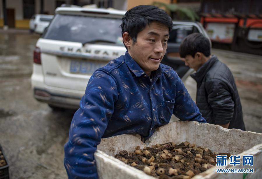 改变中国命运的伟大决战——以习近平同志为核心的党中央引领亿万人民打赢脱贫攻坚战纪实