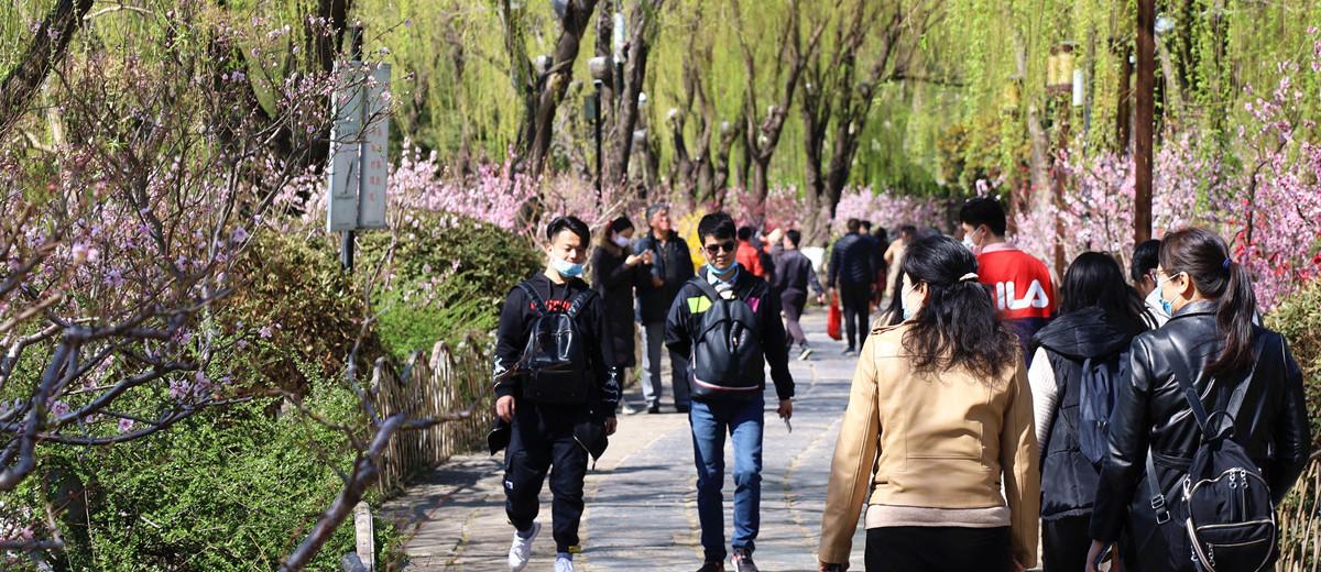 济南:仲春景气和 繁花照眼新